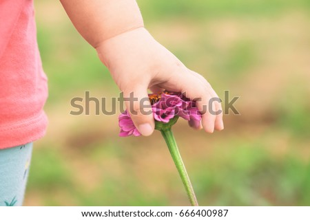 Asian kid exploring natural environment in the flower garden.Outdoor activity like play, touch and see the real things is the best for sensory learning method for baby and kids.
