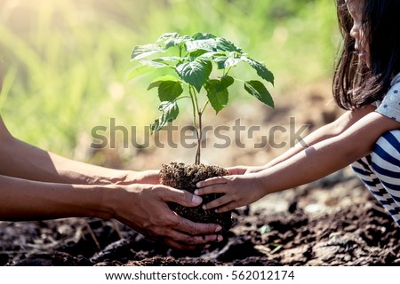 Asian little girl helping his father to plant the tree in the garden as save world concept