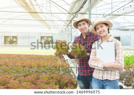 Asian man and asian woman gardeners hand hold lettuce and hold white board in hand,Small business entrepreneur concept