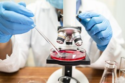 Asian scientist biochemist or microbiologist working research with a microscope in laboratory. For protect outbreak Coronavirus Covid19, bacteria and germs.