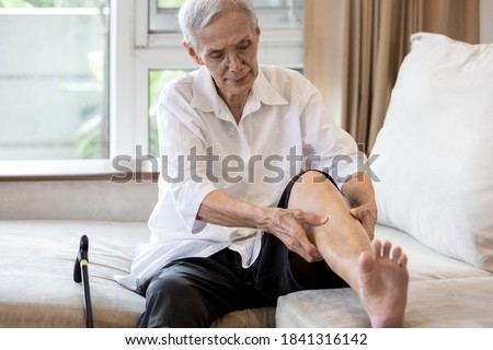 Asian senior woman hold her leg suffering from pain in legs,elderly patient have cramps in her calves,massage the calf by hands or beriberi in the leg,old people getting numb after sitting for so long