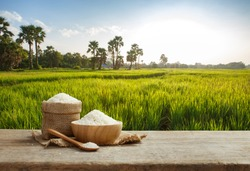 Asian uncooked white rice with the rice field background