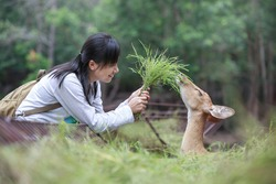 Asian woman deer feeding close and happy.