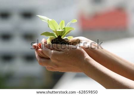Asian woman holding plant.