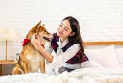 Asian woman is resting with a Shiba Inu dog on bed in bed room, The girl is playing the dog's head.Pet Lover concept.Shiba Inu is a Japanese dog that is famous throughout the world.