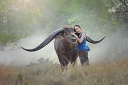 Asian woman wearing traditional thai culture and her buffalo,countryside Thailand