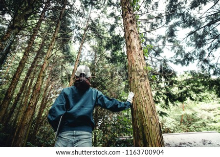 Asian women working with forestry Stock photo ©