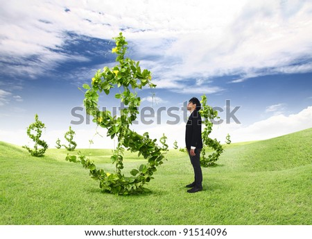 asian young business man looking dollars tree