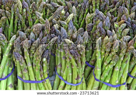 Asparagus Bunches - stock photo
