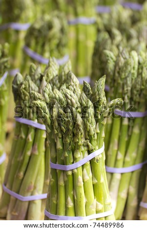 Asparagus close up.