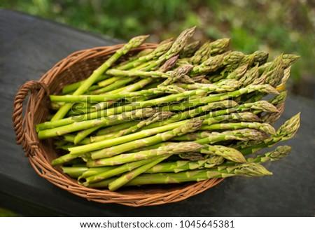 Asparagus. Fresh Asparagus. Green Asparagus in basket. Stock photo ©