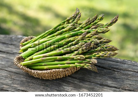 Asparagus. Fresh Asparagus. Pickled Green Asparagus. Bunches of green asparagus in basket, top view- Image Stock photo ©