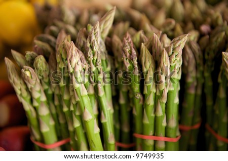 Asparagus in bunches at an open air market