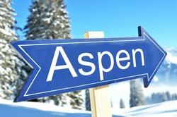 ASPEN arrow in the winter forest