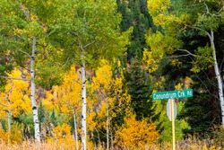 Aspen, Colorado rocky mountains foliage in autumn on Castle Creek scenic road with sign for Conondrum creek and colorful yellow leaves on american aspen trees