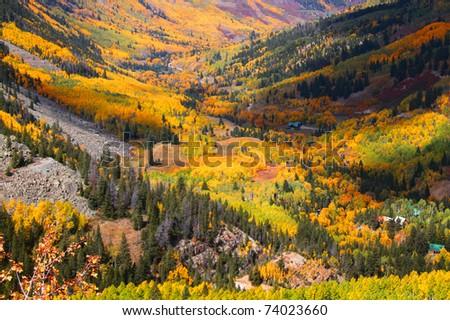 Aspen valley in Colorado during Autumn time