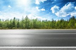 asphalt road and forest