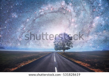Asphalt road and lonely tree under a starry night sky and the Milky Way. Courtesy of NASA.