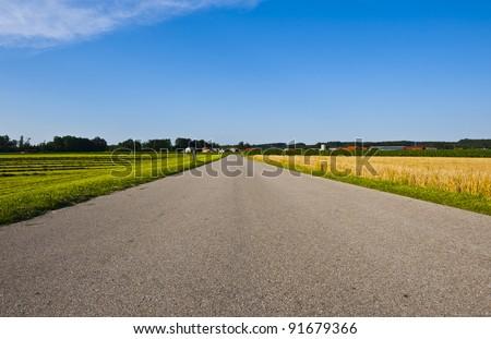 Asphalt Road Between Wheat Fields in Bavaria, Germany
