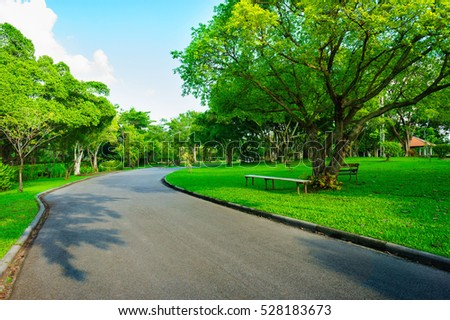Asphalt road go to greenness forest and blue sky day in public park at Bangkok, Thailand. Third. - Shutterstock ID 528183673