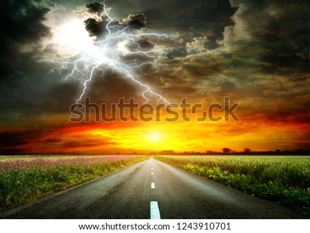 Asphalt road going through a field of wheat and alfalfa. On the horizon, sunset and lightning. Nature before a thunderstorm. Very bright image