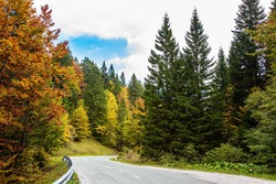 Asphalt road in a picturesque autumn forest. Beautiful sunny autumn day. Picturesque Julian Alps. Green grassy lawns in mountain valley. Travel to Slovenia