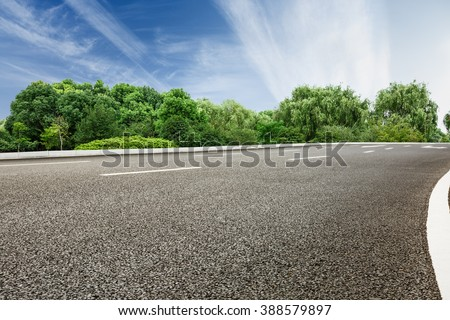 asphalt road in front of the green woods