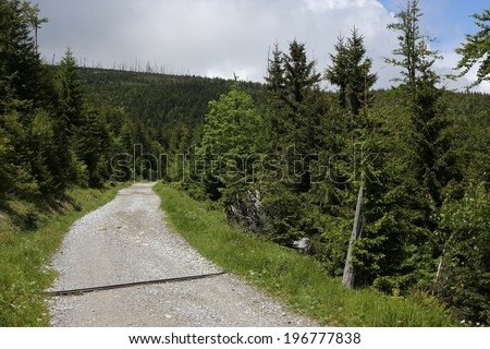 asphalt road in mountain forests, Natural Protected Area Jeseniky, Czech republic