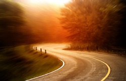 Asphalt road in the national park with sunlight.