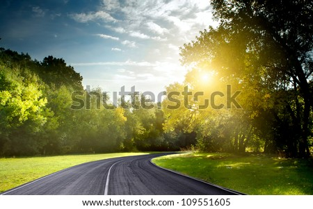Asphalt road through the forest