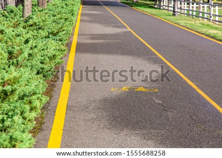 asphalt road with a bicycle symbol and a marked lane with yellow markings for the movement of bicycles with bushes and green grass on the roadside on a sunny day after rain. #1555688258