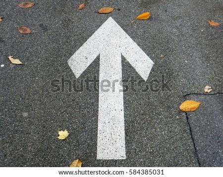 Asphalt road with arrow in autumn