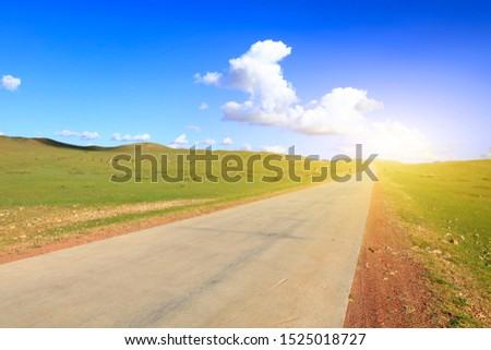 Asphalt roads and cattle on the grasslands #1525018727