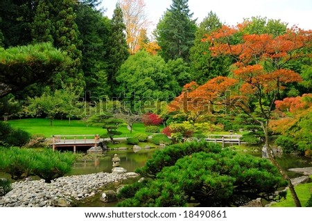 Assorted autumn colors in Japanese Garden at Seattle, Washington Park Arboretum