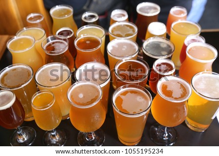 Assorted Craft Beer Varieties - IPA's, Stouts, Lagers, Sours and More