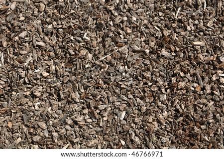Assorted Landscape Brown Bark Background