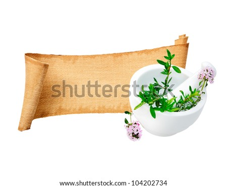 Assorted Rolled Herb Paper Banner with some blank copy-space for Memo. For Herbs and spices concepts. On white background. - stock photo