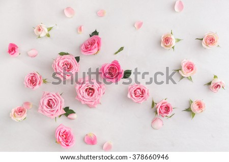 Assorted roses  heads. Various soft roses  and leaves scattered on a vintage background, overhead view #378660946