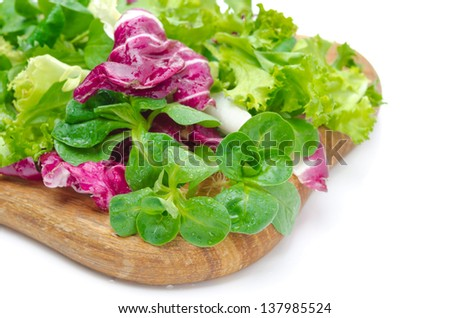Assorted several kinds of fresh salad (corn, radicchio, lettuce) on a wooden board, selective focus, isolated