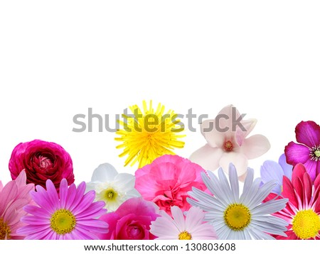 Assorted spring flowers frame on white