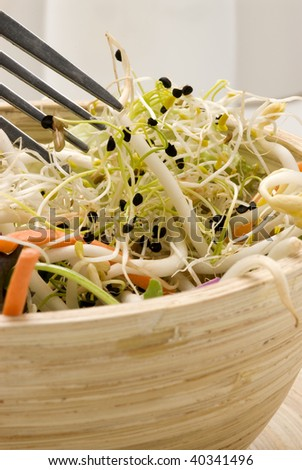 Assorted sprouts salad in a wooden bowl. Selective focus.