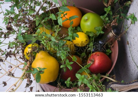 Assortment of different various organic fruits in a flower pot. Colorful bright background. Composition of assorted fresh ripe raw organic fruits. Healthy lifestyle, dieting concept, clean eating. #1553113463