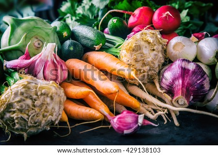Assortment of fresh vegetables. Carrot garlic kohlrabi onion celery cucumber parsnip and radish on table.