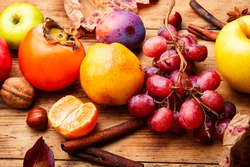Assortment of fruits,grapes and nuts.Autumn fruits.Autumn seasonal harvest