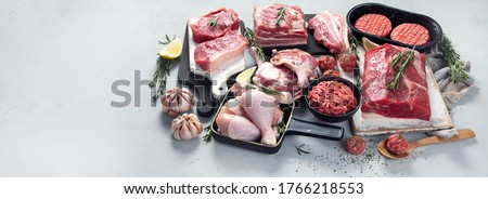 Assortment of raw meats on grey background. Panorama, banner with copy space