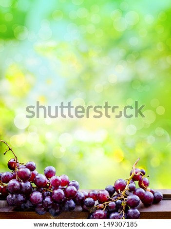 assortment of ripe sweet grapes in basket on sunny background/Grapes in the basket/ Summer Wine Season