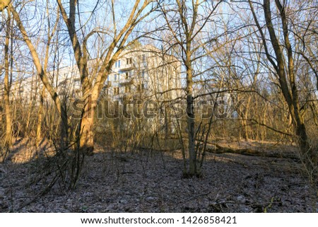 astern Europe,Ukraine, Pripyat, Chernobyl. Exteriors, overgrown trees brush, of housing developments , residential blocks. #1426858421