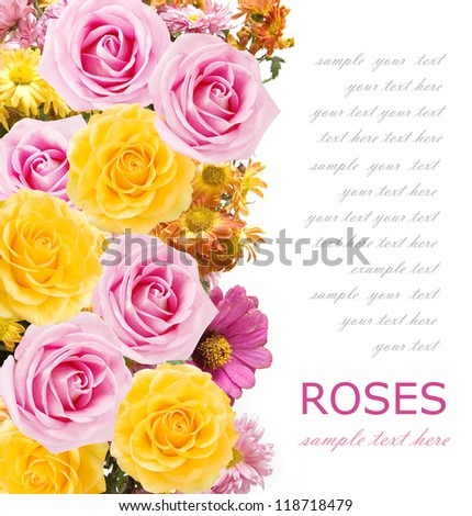 Asters and roses bunch isolated on white background with sample text