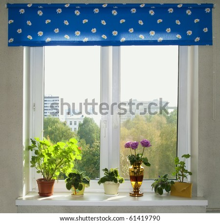 At a window stand flowers, behind a window a sunny day