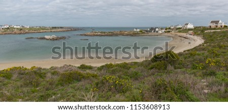 At the harbour at Jacob's bay with fynbos in the foreground. Western Cape, South Africa. West Coast. West Coast near Saldanha. #1153608913
